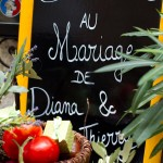 Diana-+-Thierry-Wedding-10-logo